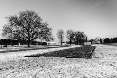 Sachsenhausen-42